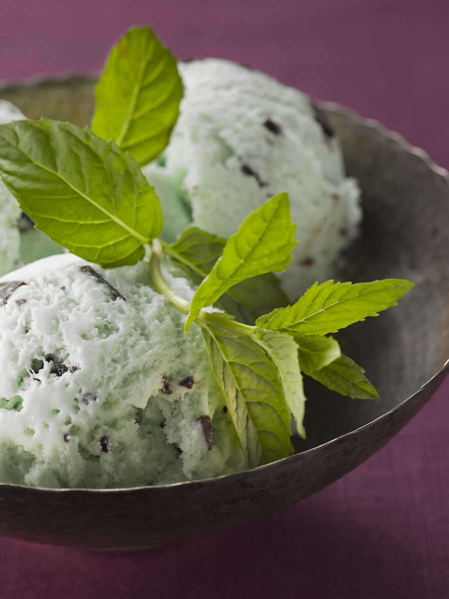 13-0620_07_MINT_CHOC_CHIP_013